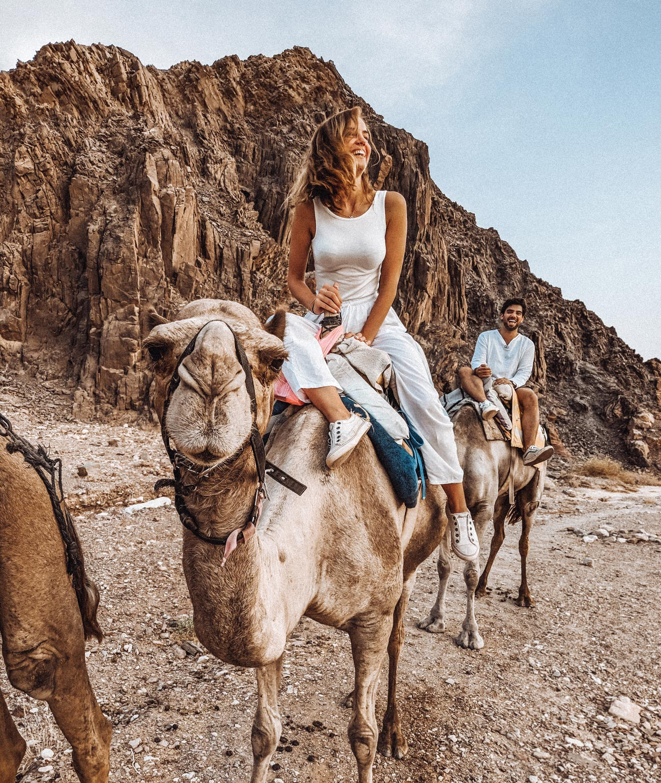 eilat-israel-camel-ride-sunset
