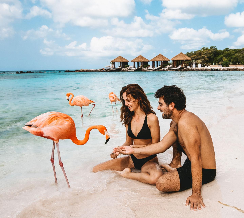 aruba-feeding-flamingo-beach-travel-couple