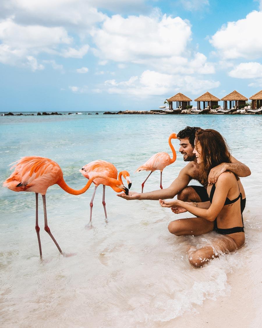 flamingo-beach-aruba-renaissance-resort