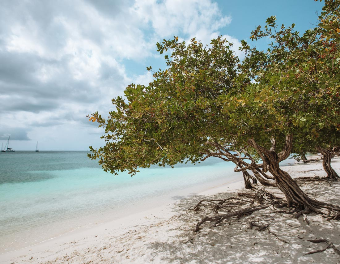 surfside-beach-aruba