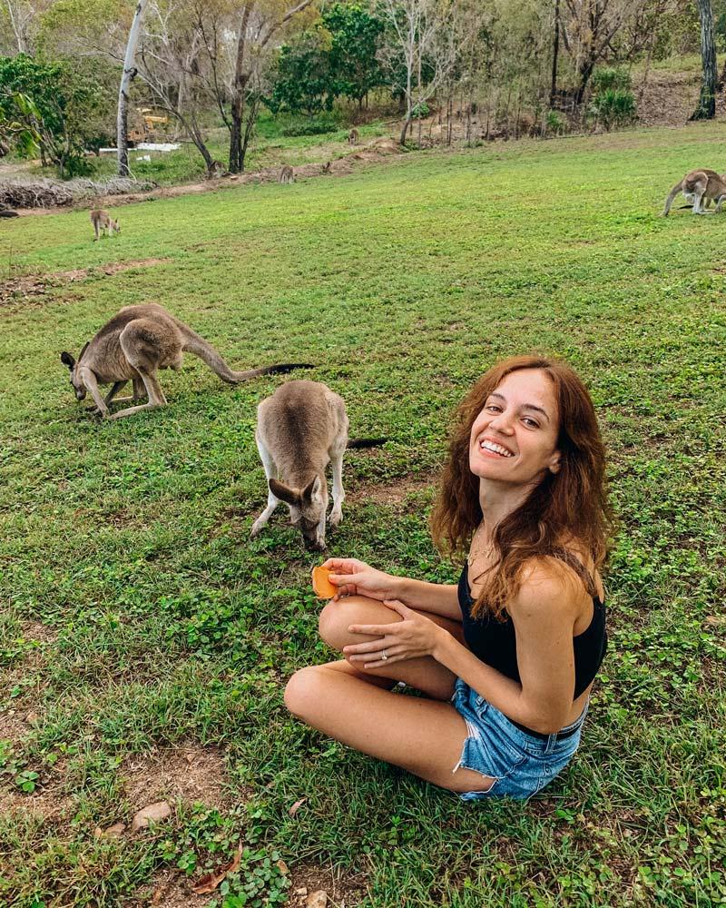 feeding-kangaroos-australia-katerina-yinon