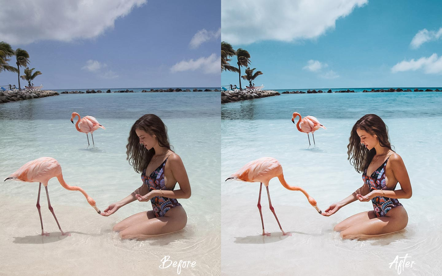 flamingo-aruba-tropical-beach-preset-lightroom