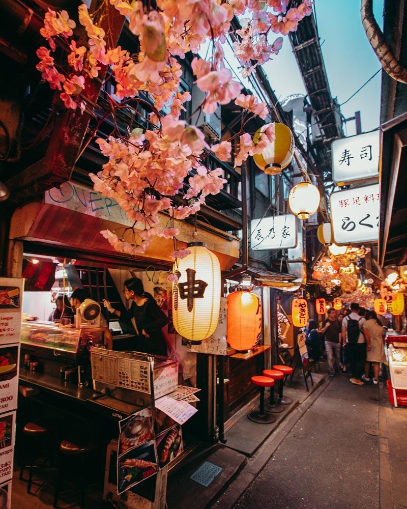 omoide-yokocho-tokyo-piss-alley