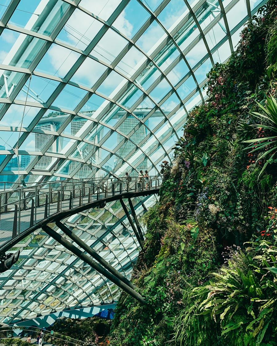 cloud-forest-gardens-by-the-bay-botanica