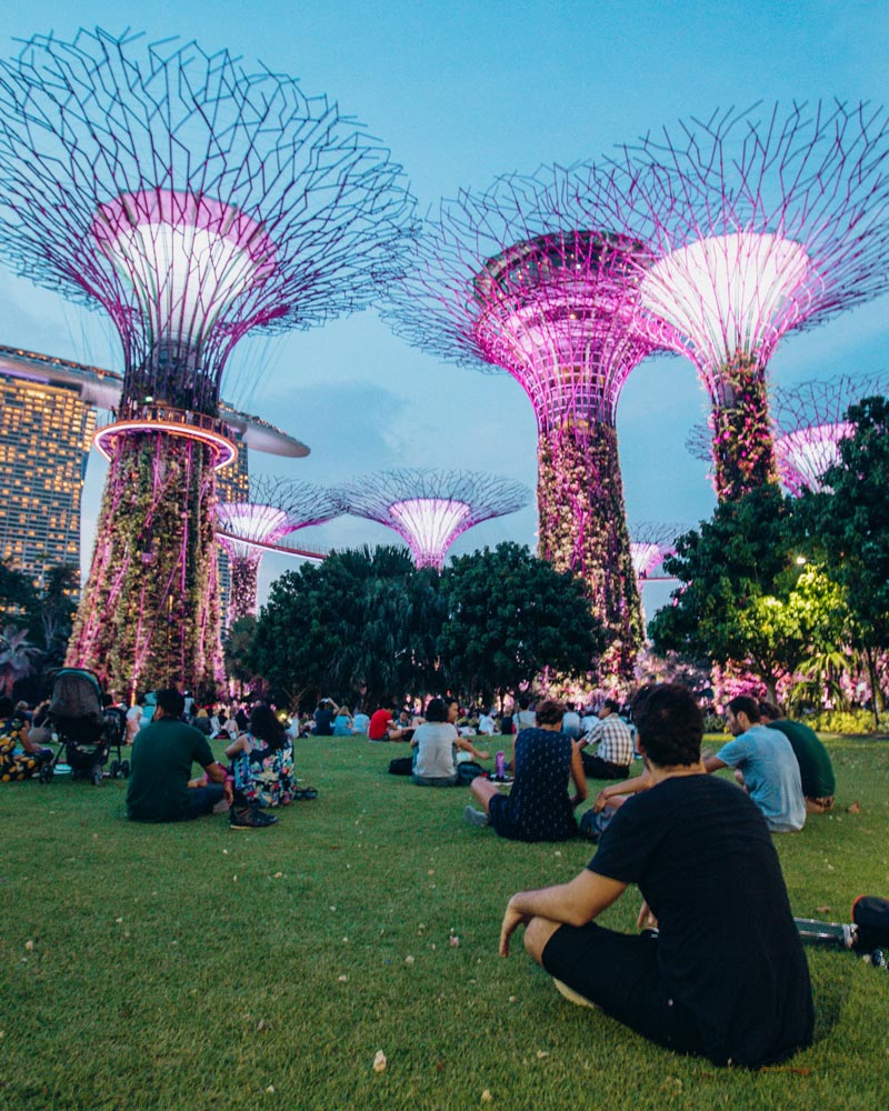 things-to-do-in-singapore-gardens-by-the-bay