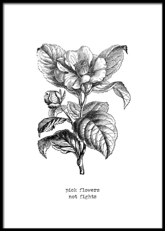 desenio-posters-sketch-flower