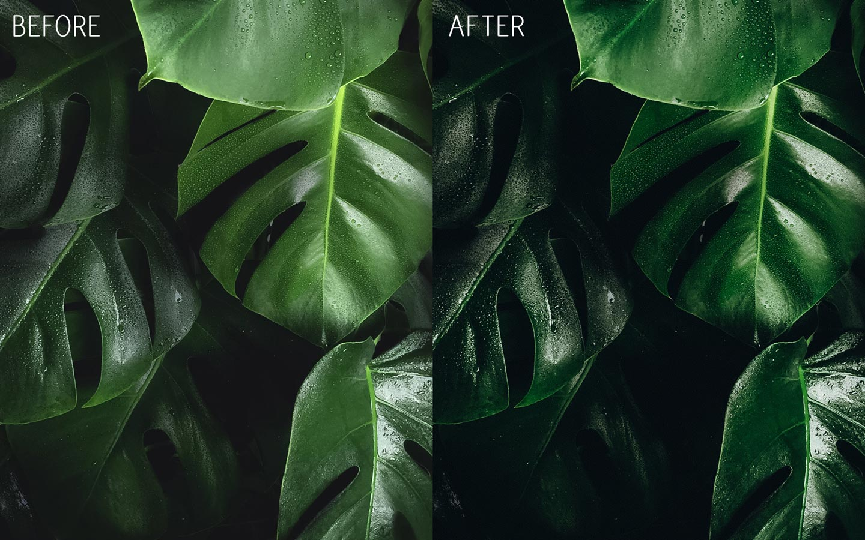 before-after-lightroom-free-presets