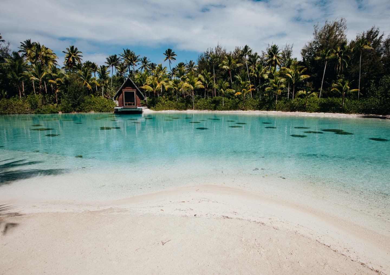 lagoon-snorkeling-coral-reef-tropical